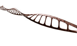 DNA Strand Micro Royalty Free Stock Images