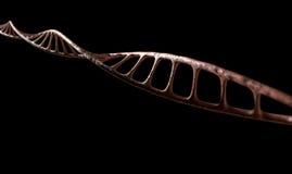 DNA Strand Micro Royalty Free Stock Photo