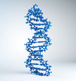 DNA strand model. An accurate DNA strand model Royalty Free Stock Photos