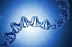 DNA strand model Stock Photo