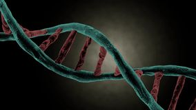 DNA strand spinning stock video