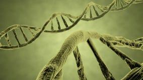 DNA strand yellow Stock Photos