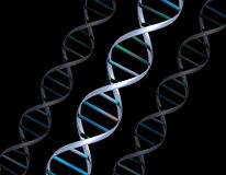 DNA strands Stock Photos
