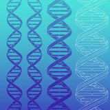 DNA strands. 4 different DNA strands silhouettes Royalty Free Stock Images