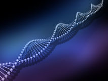 DNA strands Stock Photo