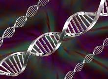 DNA Strands vector illustration