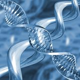 DNA strands royalty free illustration