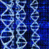 DNA Strands - 3d rendered illustration Stock Photo