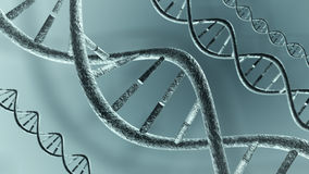 DNA strands Stock Image