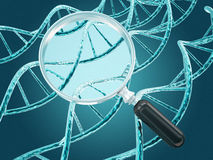 Dna strands and magnifier Royalty Free Stock Image