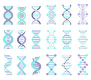 DNA Strands Set. DNA Strands Vector Set, DNA, genetic sign, elements and icons collection Stock Photo