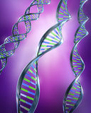 DNA Strands - Simple and dual helix.  Royalty Free Stock Photos