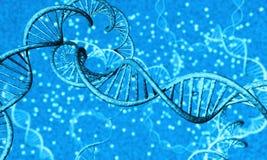 DNA-Strang - 3 Stockfoto