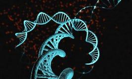DNA-Strang - 4 Lizenzfreies Stockbild