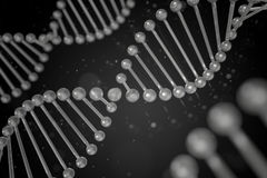 DNA-Strang auf schwarzem Hintergrund Stockfotografie