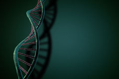 DNA String Stock Images