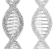 DNA String Futuristic Megalopolis Vector Royalty Free Stock Photo