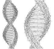 DNA String Futuristic Megalopolis Vector Royalty Free Stock Photos