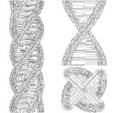 DNA String Futuristic Megalopolis Vector Royalty Free Stock Photography