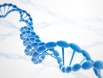 Dna strings blue. On white background Royalty Free Stock Images