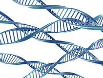 DNA strings royalty free stock images