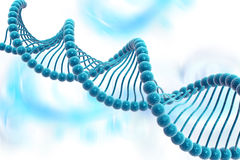 Free DNA Structure Stock Photo - 47583610