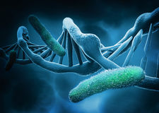 DNA structure and bacteria Stock Images