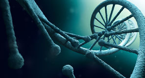 DNA structure close up Royalty Free Stock Images