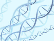 DNA structure Royalty Free Stock Photo