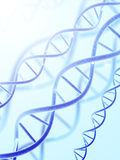 DNA structure Stock Images