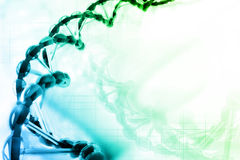 DNA structure. Digital illustration of DNA structure royalty free illustration