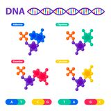 DNA structure, genome sequencing concept. Nanotechnology and biochemistry laboratory. Molecule helix of dna, genome or. Gene structure. Human genome project royalty free illustration
