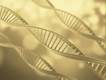 DNA Structure Royalty Free Stock Photos