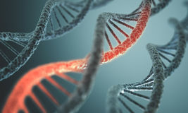 DNA Structure. Long structure of the DNA double helix in depth of view stock photo