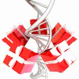 DNA structure model and gifts Royalty Free Stock Images