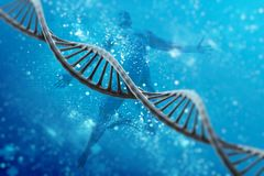 Dna cell model research concept, 3D rendering Stock Images