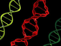 DNA structures. Royalty Free Stock Photos