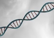 DNA-structuur Stock Foto's