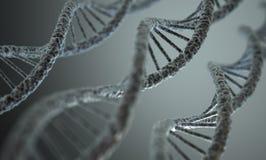 DNA-Structuur Stock Afbeelding