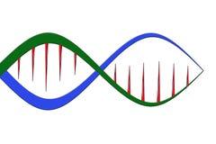 DNA-structuurlijn op witte achtergrond wordt geïsoleerd die stock illustratie