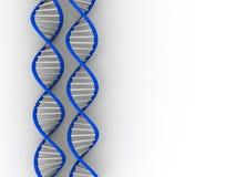 DNA-Struktur lizenzfreie stockbilder