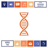 DNA symbol icon. Element for your design . Signs and symbols - graphic elements for your design Stock Photography