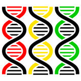 DNA Symbols . Vector illustration. Royalty Free Stock Photography