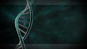 DNA sznurek ilustracja wektor