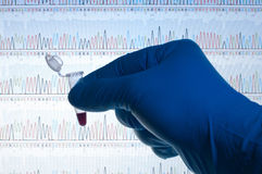 DNA test. A micro-centrifuge tube containing a red liquid in front of a computer screen with DNA codes Royalty Free Stock Image