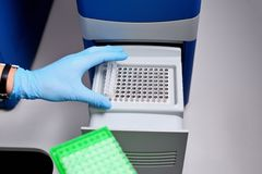 Dna test in the lab. the technician inserts the test tubes into the dna analyzer. Gloved hands close up.  stock photography