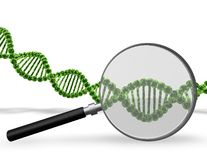 DNA testing concept with DNA strand and magnifier. Stock Images