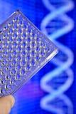 DNA testing in genetic laboratories. Stock Image