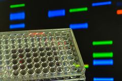 DNA testing. Genome research in the laboratory royalty free stock images