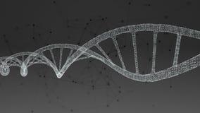 DNA umano Fondo nero astratto con il plesso illustrazione di stock